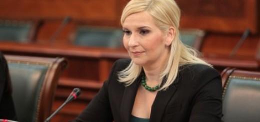 Mihajlović: Vlada nije formirana za ideje pojedinaca