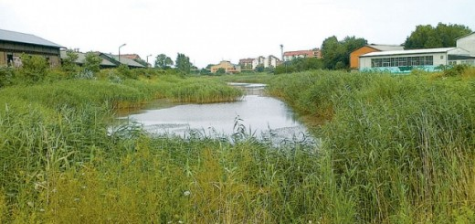 Zapušteno jezero 2